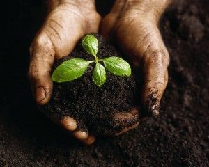 What are the Three Rules for Growing Your Lasting Legacy?